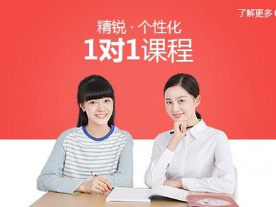 上海小学一对一辅导班